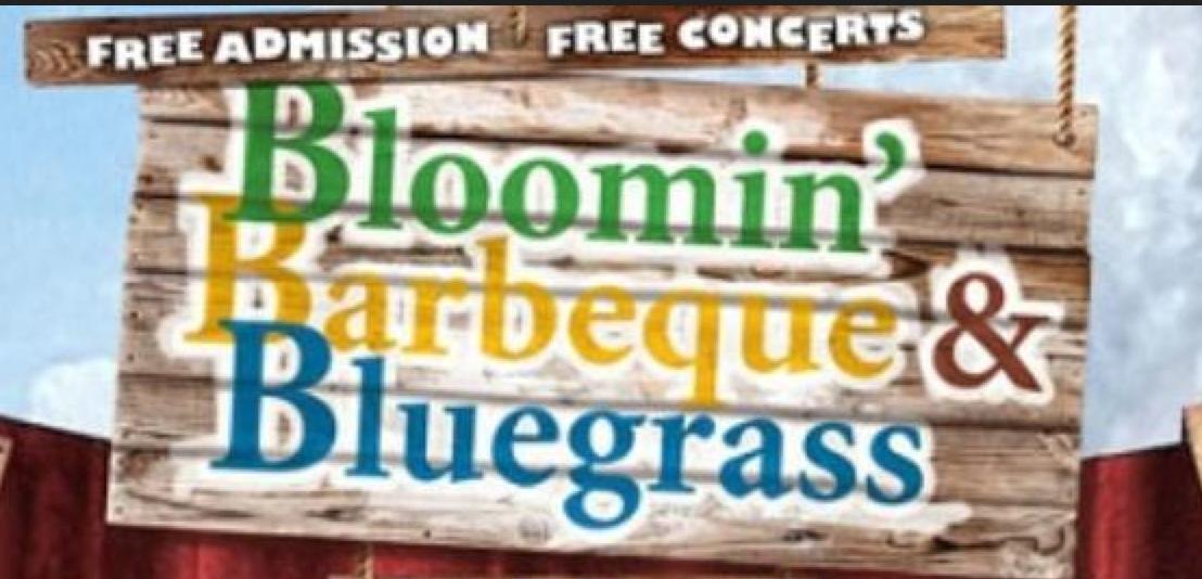 Bloomin-bbq-Bluegrass